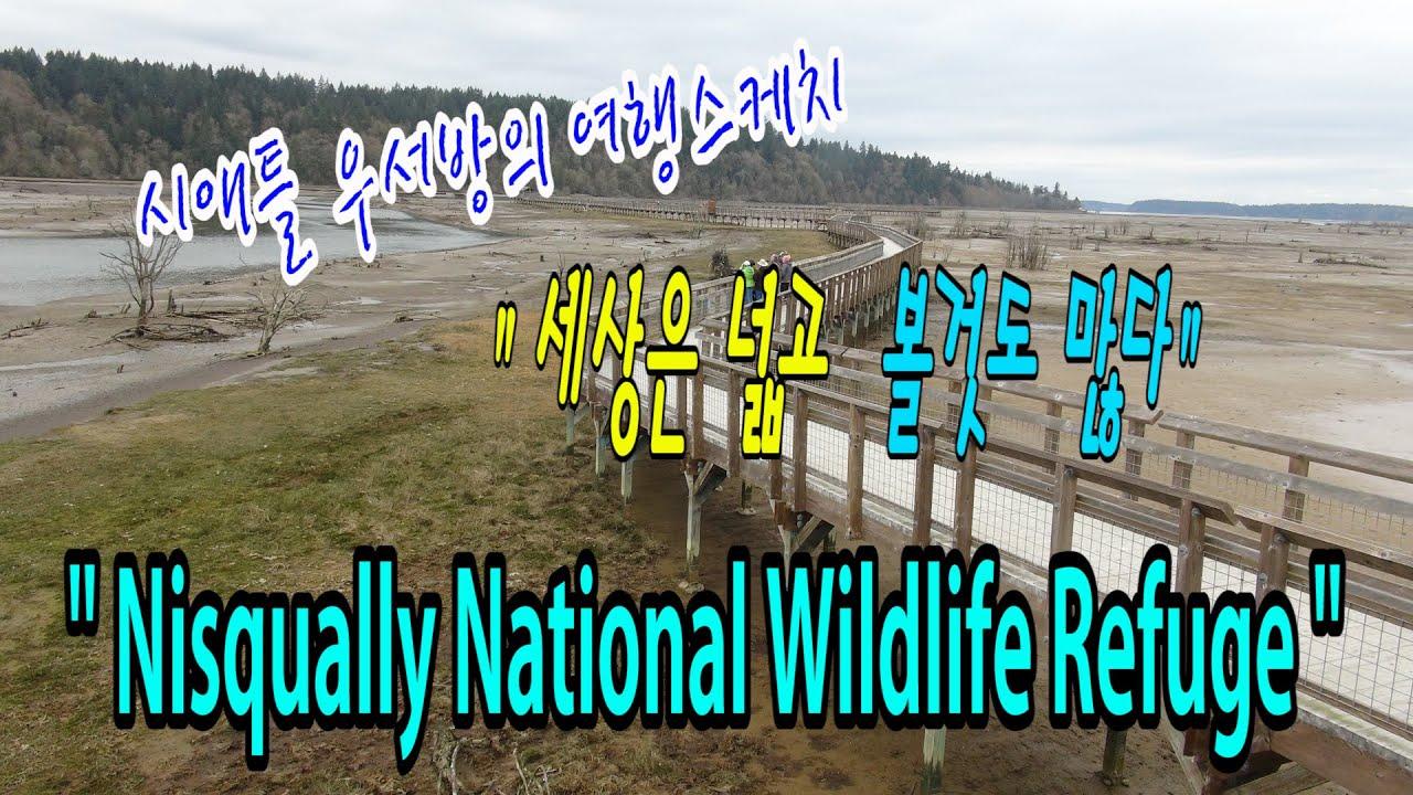"""[시애틀여행] 시애틀우서방의 여행스케치 """"세상은 넓고 볼것도 많다"""" – 45편 (Nisqually National Wildlife Refuge / 니스퀄리 내셔널 야생동물보호지역)"""
