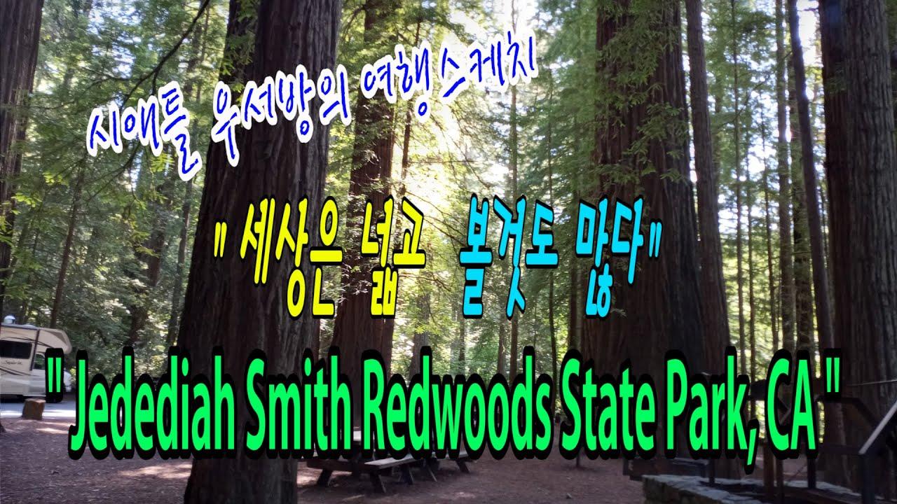 """[시애틀여행] 시애틀우서방의 여행스케치 """"세상은 넓고 볼것도 많다"""" –  68편 (Jedediah Smith Redwoods State Park)"""